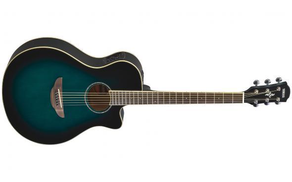 Yamaha APX600 (OBB): 1