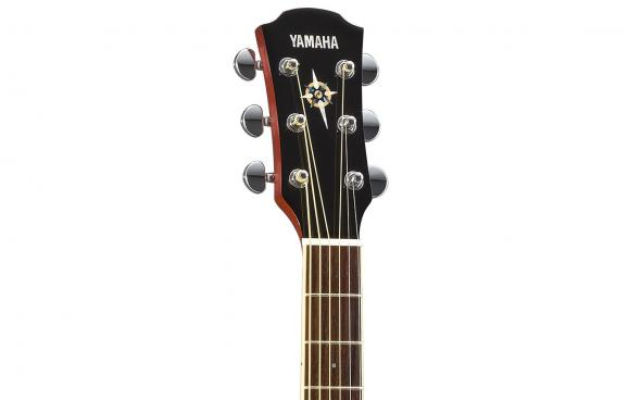 Yamaha CPX600 (Root Beer): 4