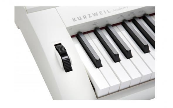 Kurzweil KA 90 WH (+ блок питания): 4