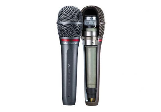 Audio-Technica AE6100: 2