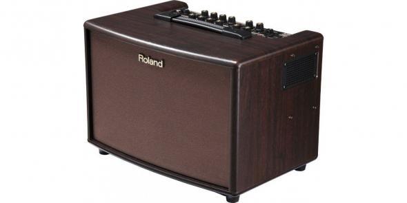 Roland AC 60 RW: 2