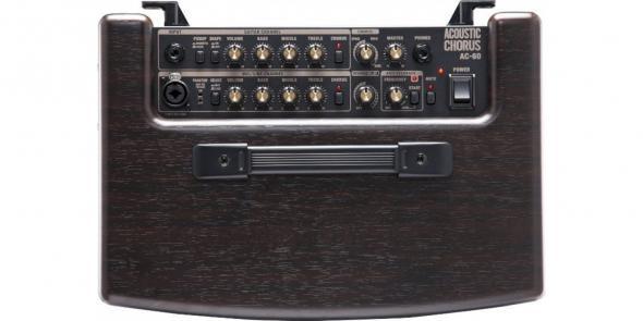 Roland AC 60 RW: 5