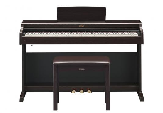 Yamaha Arius YDP-164 Rosewood (+блок питания): 2