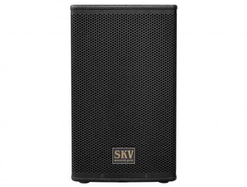 SKV Sound Pro Line-112A: 2
