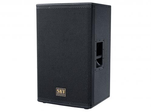 SKV Sound Pro Line-115A: 1