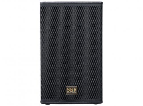 SKV Sound Pro Air-115A: 2