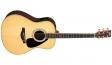 Yamaha LLX6A (NT): 1