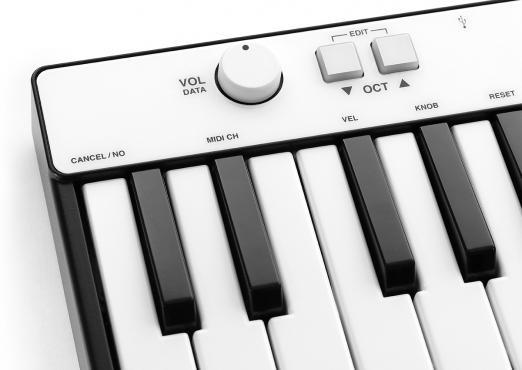 IK Multimedia iRig Keys Mini: 2
